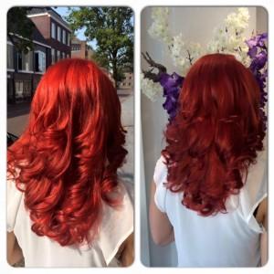 Robijn rode haarkleur